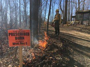Southern Illinois Prescribed Burn